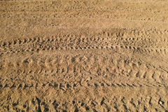 Ruts Stock Photography