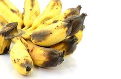 rutten banan Royaltyfria Bilder