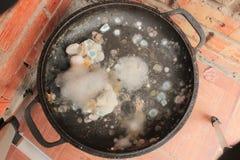 Rutten och möglig matcloseup Royaltyfri Foto