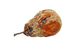 rutten pear Arkivfoton
