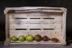 Ruttet äpple och nytt äpple på bakgrund av träasken Fotografering för Bildbyråer