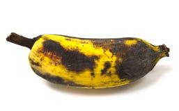 Ruttna banan som isoleras på vitbakgrund Royaltyfri Foto