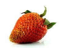 Ruttna jordgubbar på vit bakgrund Royaltyfri Fotografi