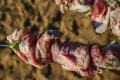 Ruw die vlees op een vleespen wordt gespietst Royalty-vrije Stock Foto