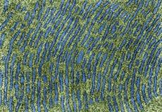 Ruw endoplasmic netwerk Valse kleur TEM royalty-vrije stock fotografie
