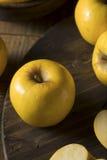 Ruw Geel Organisch Opal Apples Royalty-vrije Stock Afbeeldingen