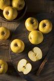 Ruw Geel Organisch Opal Apples Royalty-vrije Stock Afbeelding