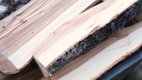 Ruw gestapeld brandhout stock videobeelden