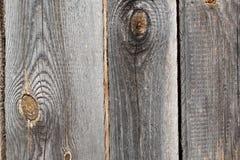 Ruw hout Stock Fotografie