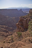 Ruw Nationaal Park Canyonlands Royalty-vrije Stock Foto