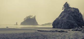 Ruw oceaanstrand op bewolkte dag Royalty-vrije Stock Afbeeldingen