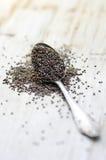Ruw Organisch Chia Seeds Royalty-vrije Stock Foto's