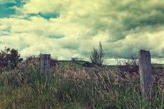 Ruw overwoekerd landschap Royalty-vrije Stock Fotografie
