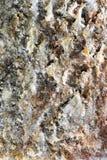 Ruw Patroon op een stuk van Rots stock foto's