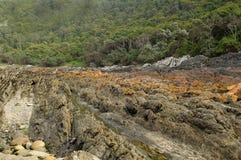 Ruw rotsen en bos Royalty-vrije Stock Afbeelding