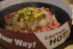 Ruw varkensvlees met rijst en saus op warmhoudplaat Royalty-vrije Stock Foto's