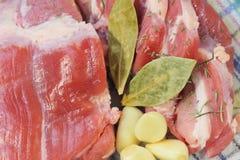 Ruw varkensvleesvlees Stock Fotografie