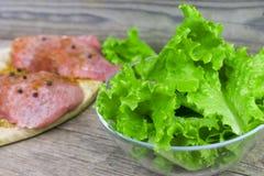 Ruw vlees met kruiden en saladebladeren in een glaskom op een oude uitstekende houten achtergrond stock fotografie