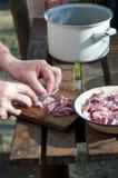 Ruw vleesknipsel stock fotografie