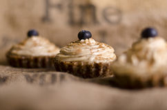 Ruw voedsel cupcakes Stock Afbeeldingen
