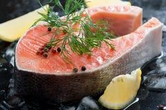 Ruw zalmlapje vlees met dille en citroen op ijs, close-up Stock Afbeelding