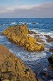 Ruw Zeegezicht van Kaap Breton in Nova Scotia, Canada stock foto's