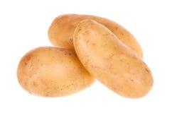 Ruwe aardappel Royalty-vrije Stock Afbeeldingen