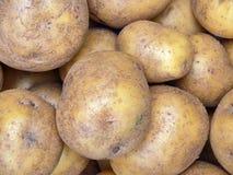 Ruwe aardappels Stock Afbeelding
