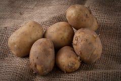 Ruwe aardappels Stock Afbeeldingen