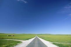 Ruwe asfaltweg Stock Foto