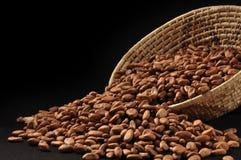 Ruwe cacao Stock Foto's