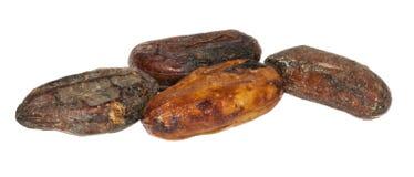 Ruwe cacaobonen Stock Foto