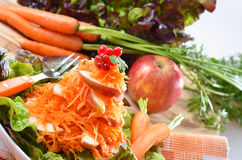 Ruwe carottesalade Royalty-vrije Stock Fotografie