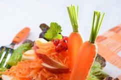 Ruwe carottesalade Stock Afbeeldingen