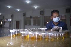 RUWE DE DRUGwet VAN INDONESIË Royalty-vrije Stock Foto