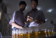 RUWE DE DRUGwet VAN INDONESIË Stock Foto's