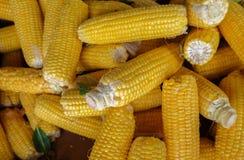 Ruwe die korrels bij lokale landbouwbedrijfmarkt worden verkocht stock foto