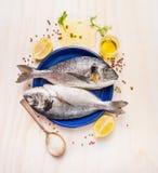 Ruwe doradovissen in blauwe plaat met gemorste olie, zout, kruiden en kruiden op witte houten achtergrond royalty-vrije stock foto