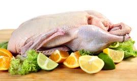 Ruwe eend met citrusvruchten Stock Afbeelding