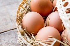 Ruwe eieren Stock Fotografie