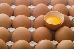 Ruwe eieren in een eikarton Stock Afbeeldingen