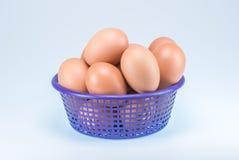 Ruwe eieren in purpere mand op witte achtergrond Stock Foto's