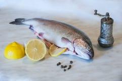 Ruwe forel met plakken van citroen, pepererwten en pepermolen op een marmeren achtergrond Verse visschotel De voorbereiding van h royalty-vrije stock fotografie