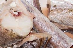 Ruwe gesneden vissen Pollock Royalty-vrije Stock Foto's