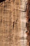 Ruwe Gespleten Eiken Verticaal Stock Foto