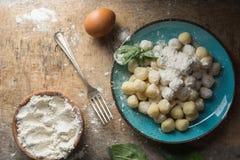 Ruwe gnocchi, het typische Italiaans maakte van aardappel, bloem en eischotel Royalty-vrije Stock Fotografie