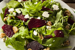 Ruwe Groene Biet en Arugula-Salade Royalty-vrije Stock Afbeelding