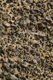 Ruwe grond Royalty-vrije Stock Afbeeldingen