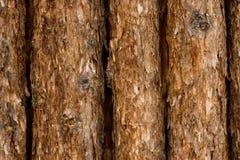 Ruwe houten achtergrond Stock Fotografie