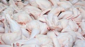 ruwe karkassen van kippen royalty-vrije stock fotografie